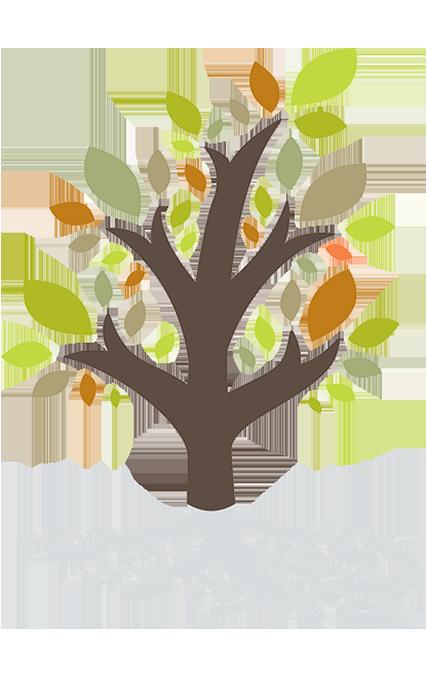 NCCOA Tree of life